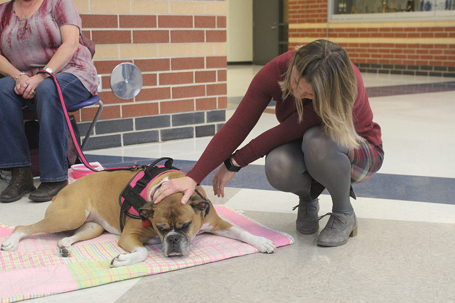 a student pets a dog