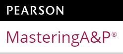 Pearson Mastering A&P