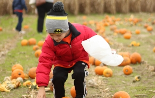 Student picks out his own pumpkin